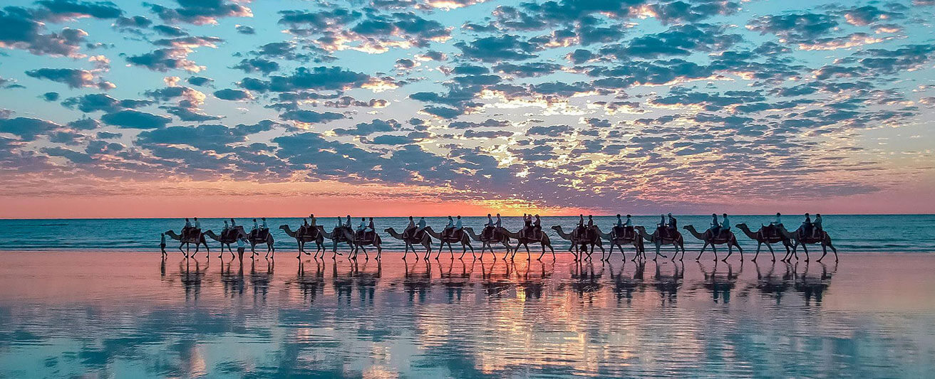 Camel Rides in Broome